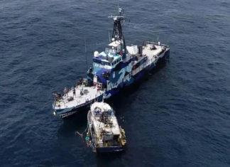 Nave della Sea Shepherd speronata