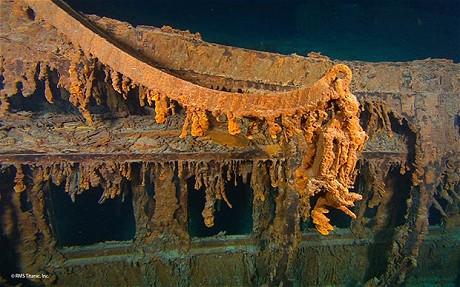 Halomonas titanicae, il batterio che sta corrodento il Titanic