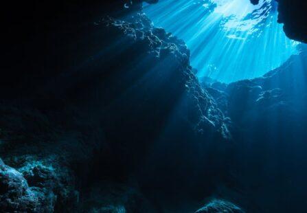 Nutrienti dalle rocce marine: lo dimostra l'Università di Leeds